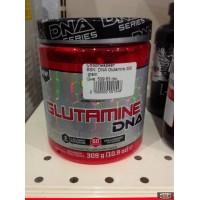 DNA Glutamine BSN 309 gram